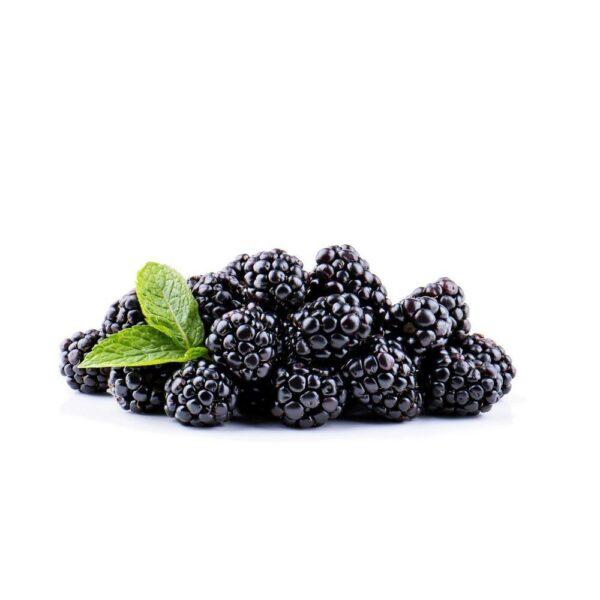 FW Blackberry - Steam E-Juice | The Steamery