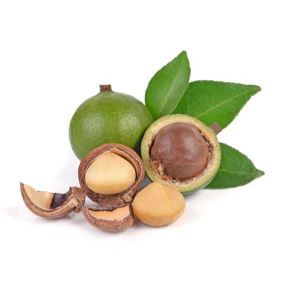 FW Macadamia Nut - Steam E-Juice   The Steamery