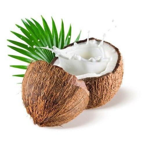 FA Coconut - Steam E-Juice   The Steamery