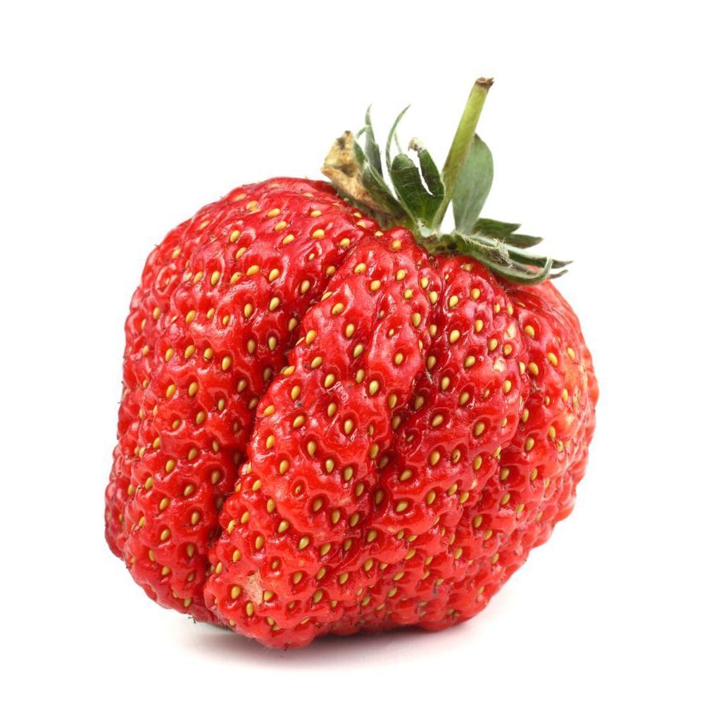 HS Strawberry - Steam E-Juice | The Steamery